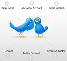Dans la jungle de Twitter