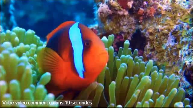 Plongeurs.tv