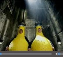 Publicités vidéos en pre-roll