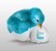 Postez directement vos articles dans Twitter