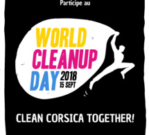 Le World Clean Up